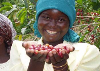 Rwanda Cofee